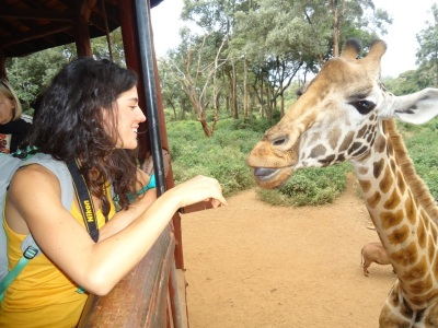 Giraffe Centre - Sheldrick Elephant Sanctuary