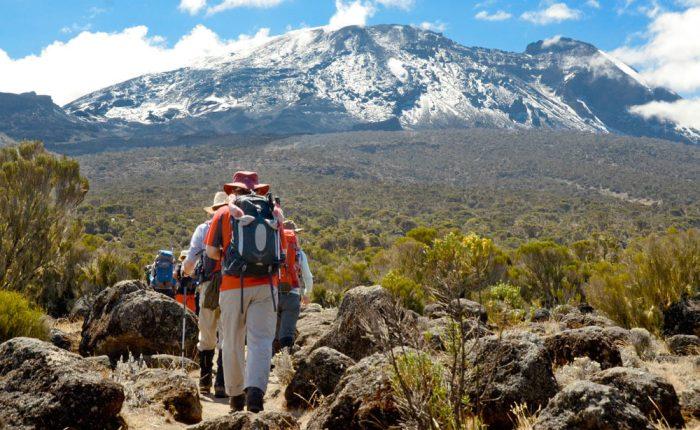 Climb Mount Kilimanjaro Lemosho Route Prices
