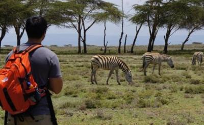 Crescent Island Game Conservancy Nairobi Day Trip